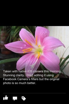 Facebook Camera: New iOS Stand-alone Camera App [REVIEW]