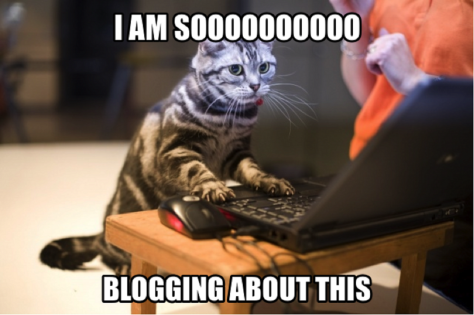 blogging cat.png